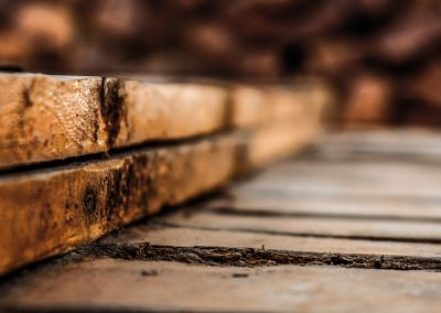 Termite Damaged Wood Example